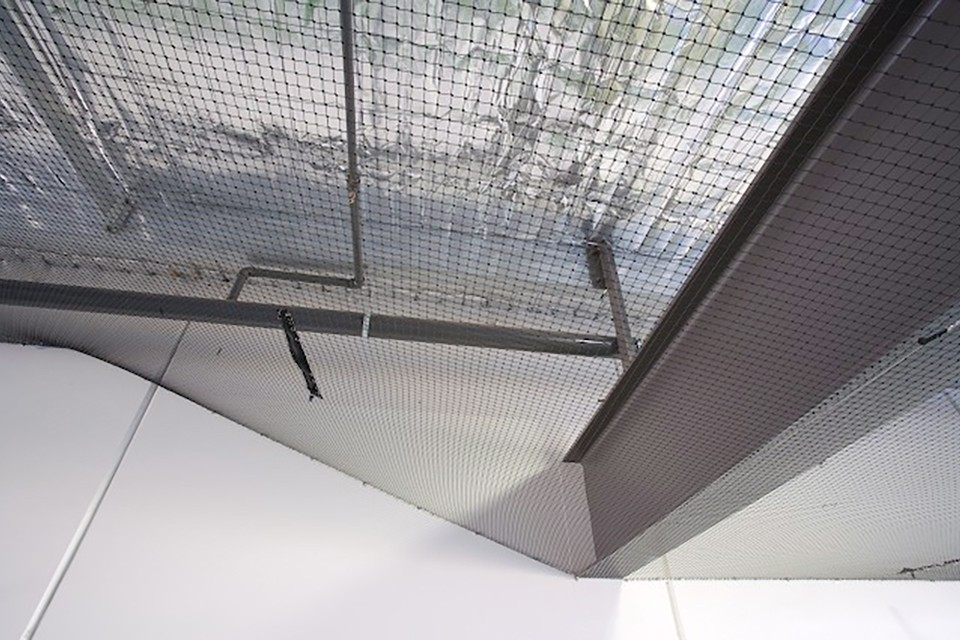Bird Netting Provides Protection From All Types Of Birds