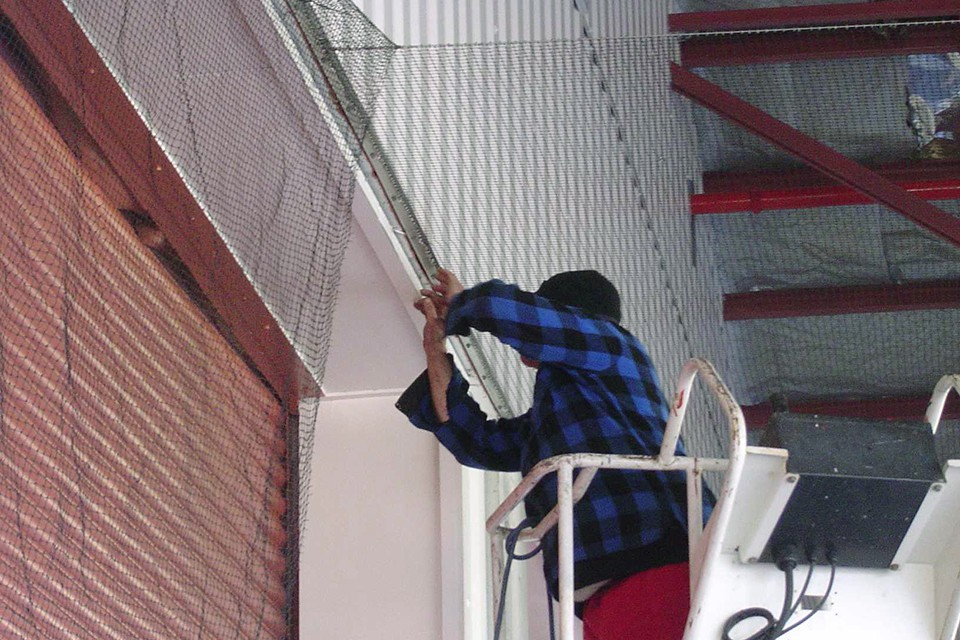 Drive By Wire >> Bird Netting Provides Protection from all Types of Birds ...