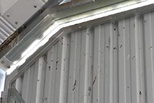 Birds nesting in barn